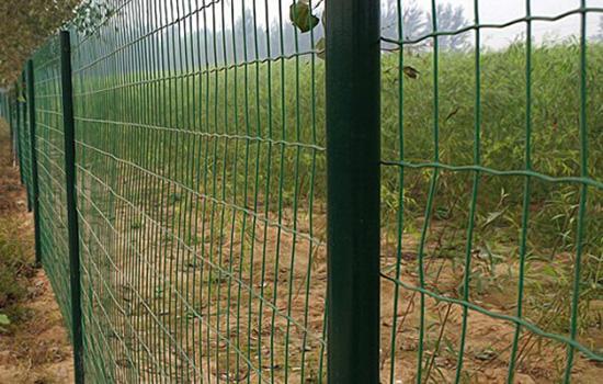 绿色边框围栏网