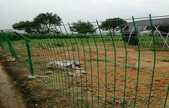 养羊围栏网