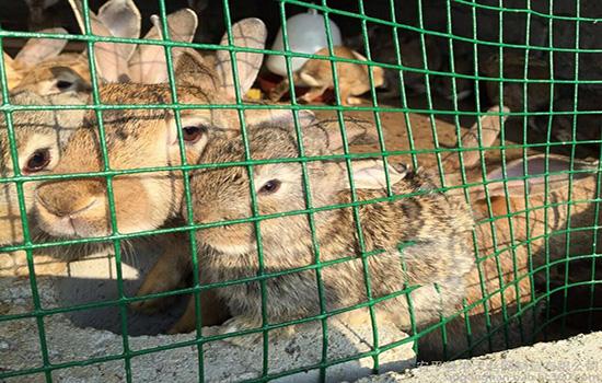 http://www.muyuanwanglan.com/197.html