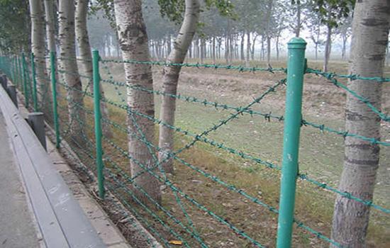 刺丝网围栏