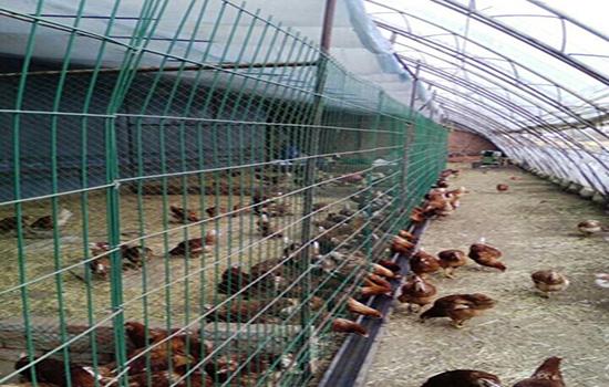http://www.muyuanwanglan.com/301.html