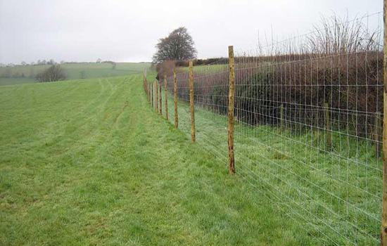 草场网围栏